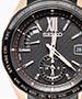 Seiko Brightz watches