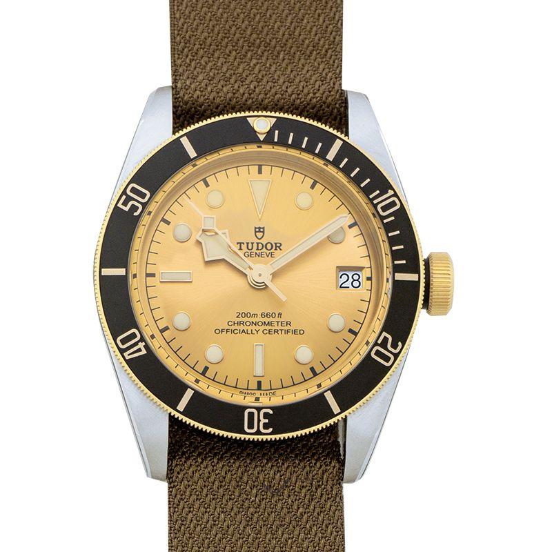 Tudor BLACK BAY 79733N-0006